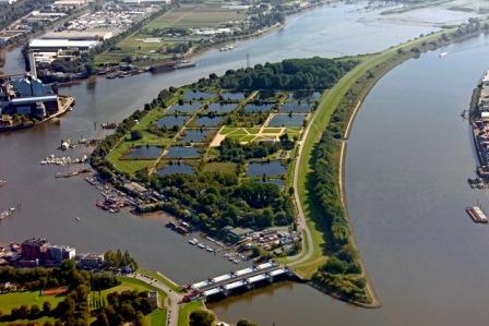 Luftbild der Elbinsel Kaltehofe. © Wasserkunst Hamburg