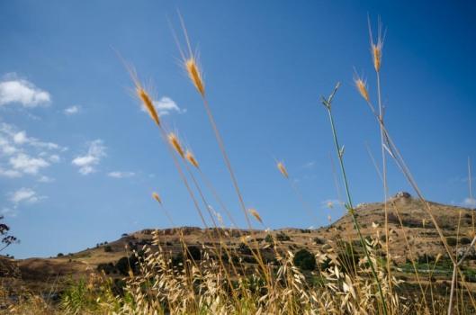 Weiten - Landschaft