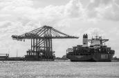 Neue Containerbrücken für die HHLA..