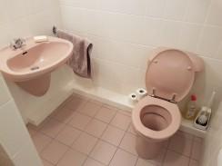Die rosa Hölle für die Mädchen als Gäste-WC im Museum.