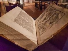 Luther übersetzte die Bibel nach dem Sinn, er interpretierte Gottes Wort. Das war damals natürlich unerhört, jeder konnte und sollte die Bibel lesen und darüber reden. Unerhört, wie die anderen Kleriker fanden, denn dies war bislang nur ihnen vorbehalten.