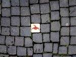 Die Spielfährte ist ein Wegweiser für Kinder, sie führen zu verschiedenen Spielstationen in der Innenstadt. Eine tolle Idee - denn Till Eulenspiegel war ein recht bekannter Narr, ein passendes Symbol für eine lustige Spurensuche. https://www.braunschweig.de/leben/im_gruenen/projekte_stadtgruen/Spielfaehrte.html